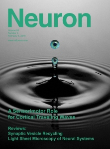 NeuronCover