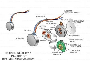coin-shaftless-vibration-motor-exploded-view-original